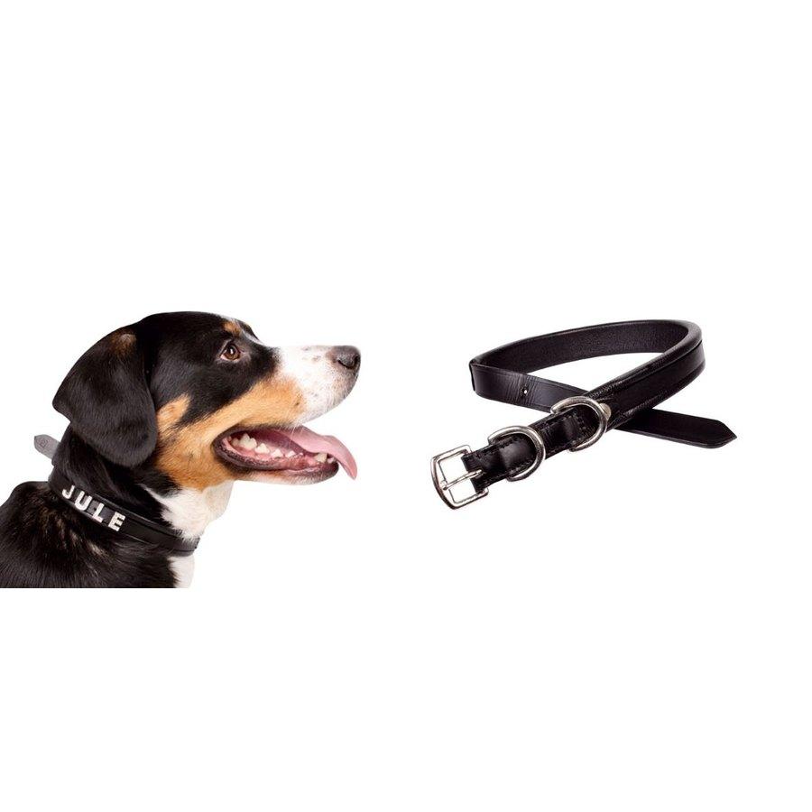 Collare per cane con porta nome hkm sports articoli per for Articoli per cani