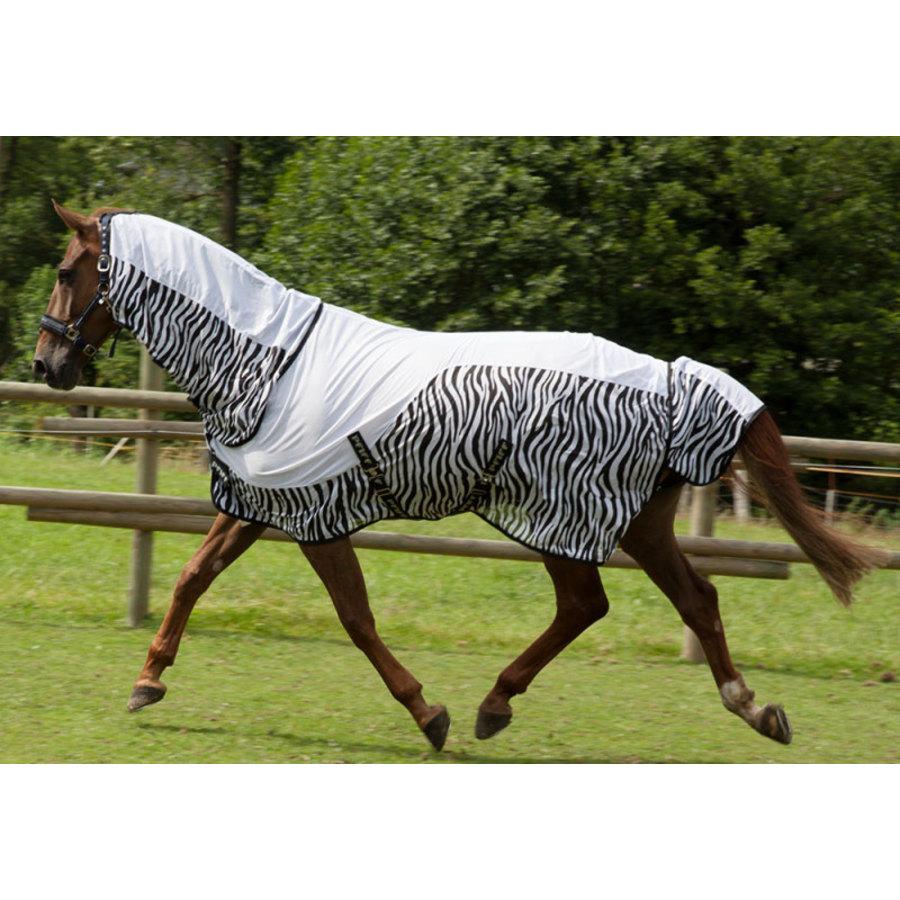 pfiff: coperte cavalli coperte antimosche ed antiinsetti per i