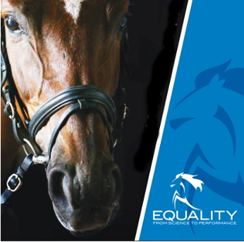 le più votate più recenti 100% originale acquista per il meglio Articoli per equitazione | La Selleria Online